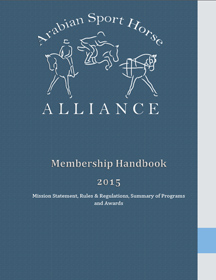 Handbook cover SM