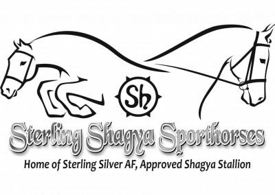Sterling Shagya Sporthorses