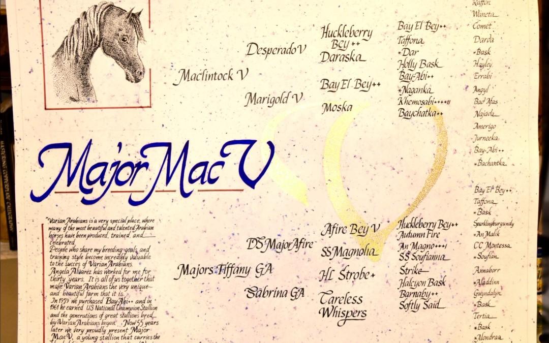 Custom Calligraphy 6 Generation Pedigrees