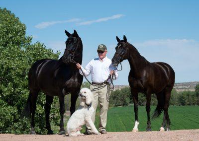 Jim Porcher Sport Horses