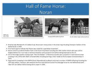 Noran HoF