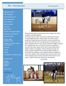 Stallion Roster_Sample