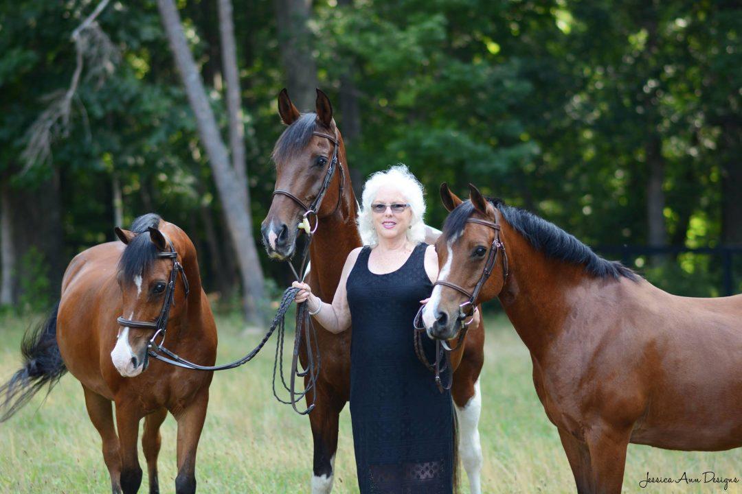 JAG Arabian Sport Horses