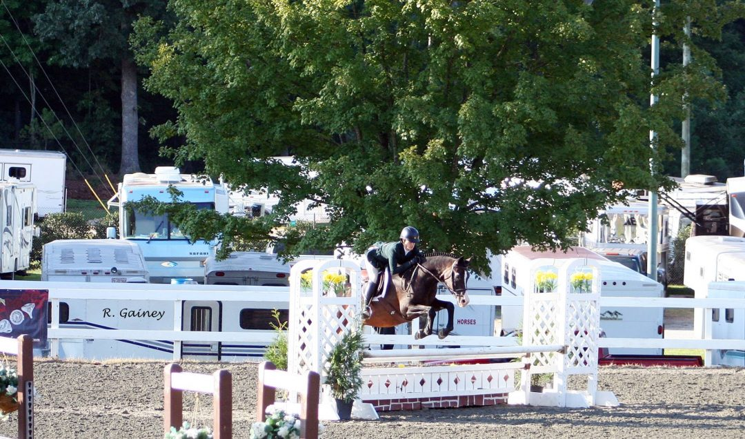 Stone Hollow Sport Horses
