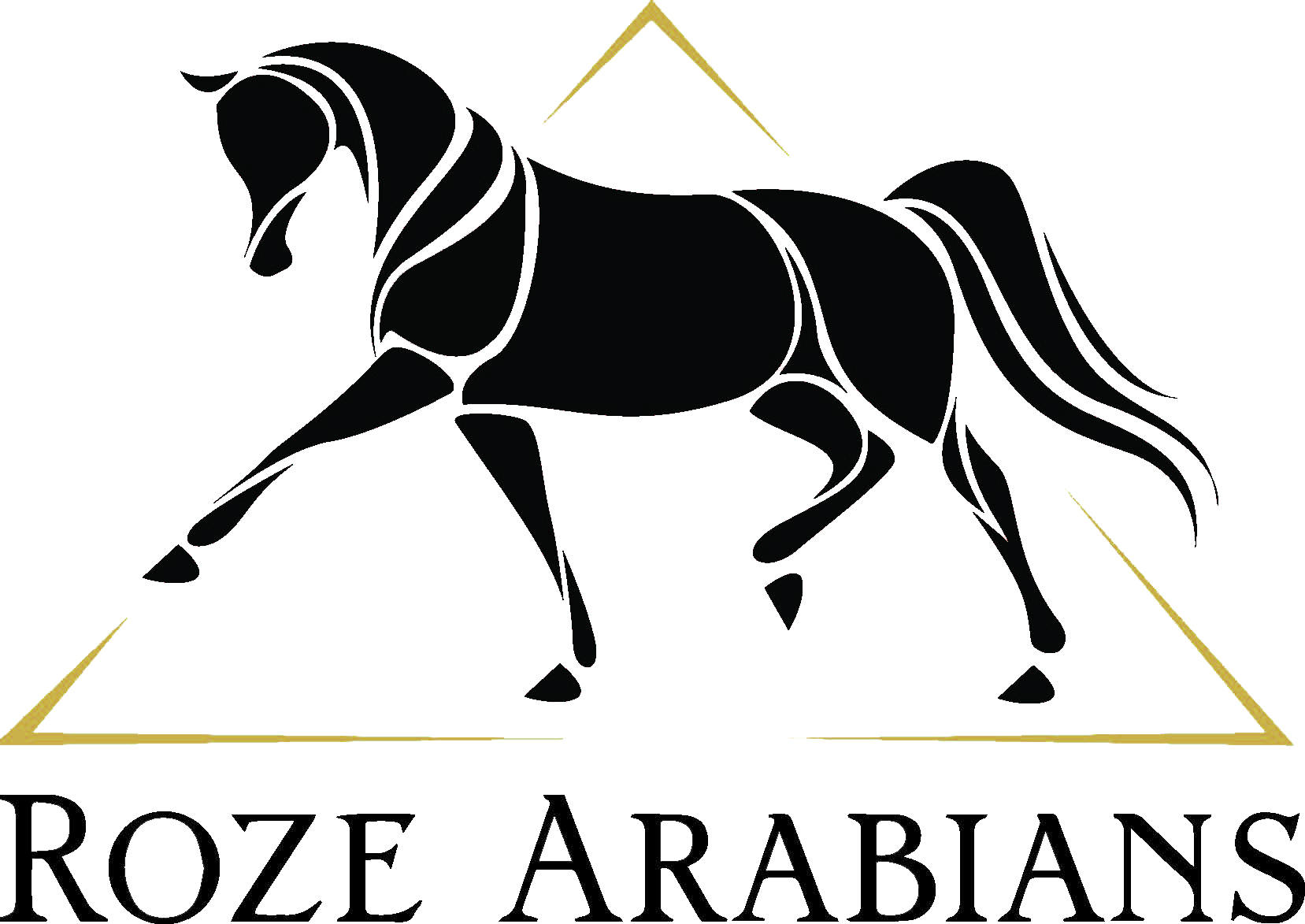 Roze Arabians Ltd.